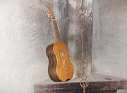 Chitarra battente made of mulberry wood and walnut
